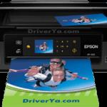 descargar driver epson xp-401